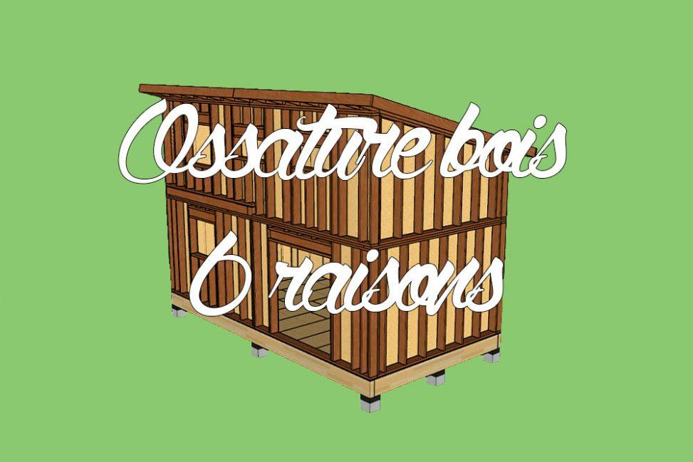 raisons de construire en ossature bois