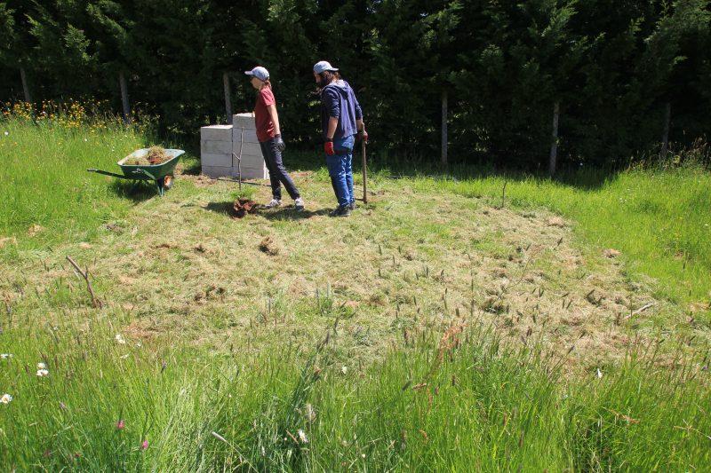 Premier coup de pioche pour creuser les fondations de notre abri de jardin