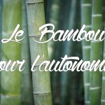 le bambou pour l'autonomie ?