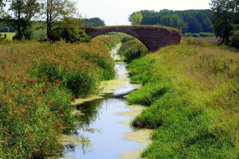 Dévier un ruisseau pour faire sa mare