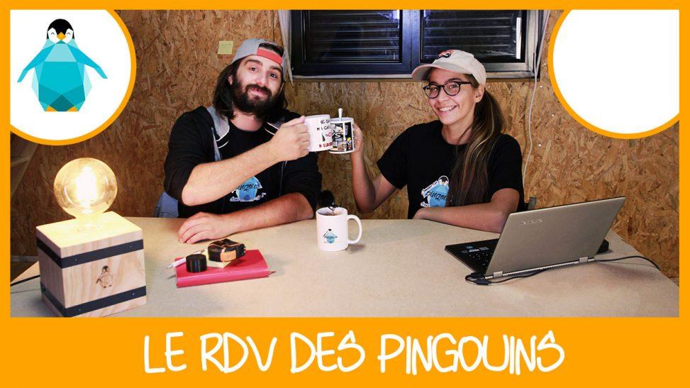 Le RDV des Pingouins