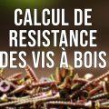 Calcul de résistance des vis à bois