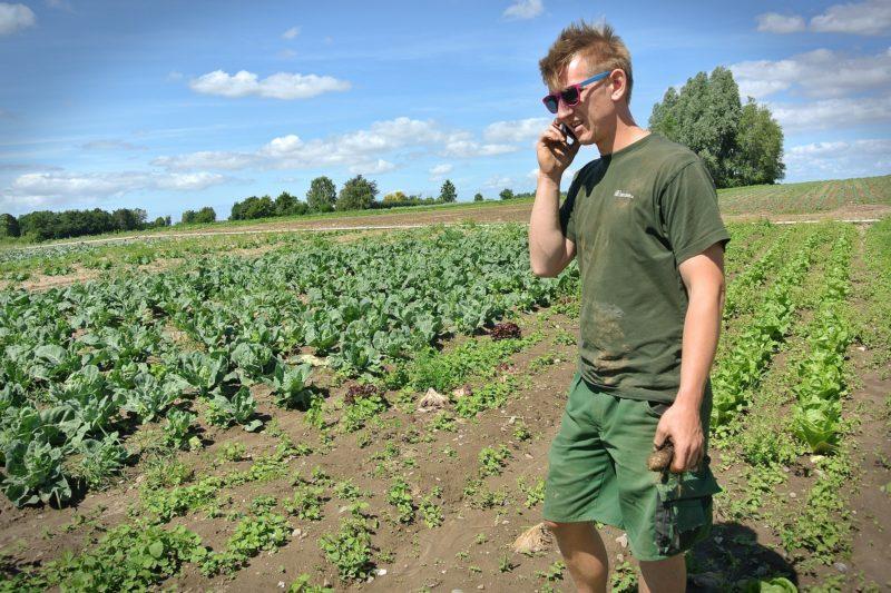 Les AMAP permettent d'avoir un contact direct avec les agriculteurs