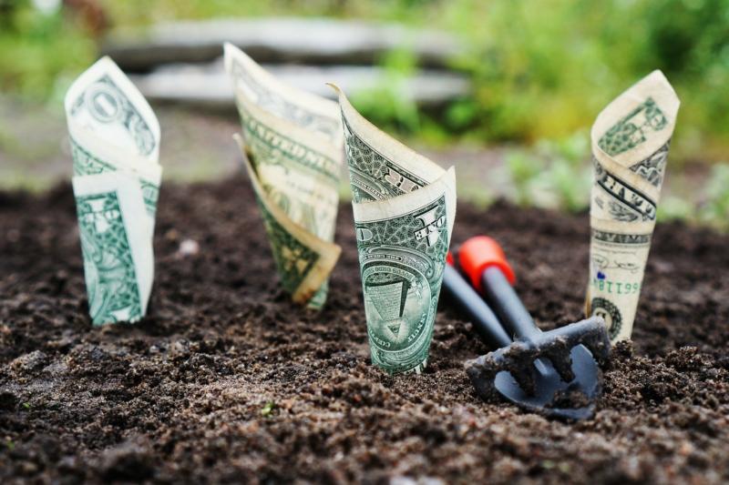 L'argent ne pousse pas dans le potager