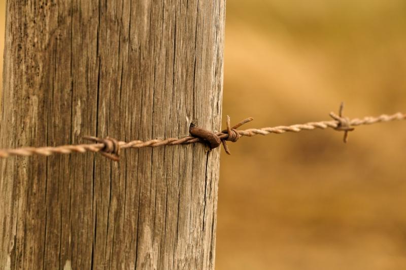 Clôture en fil barbelée