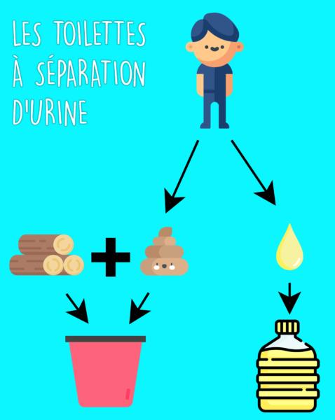 Principe de fonctionne des toilettes à séparation d'urine